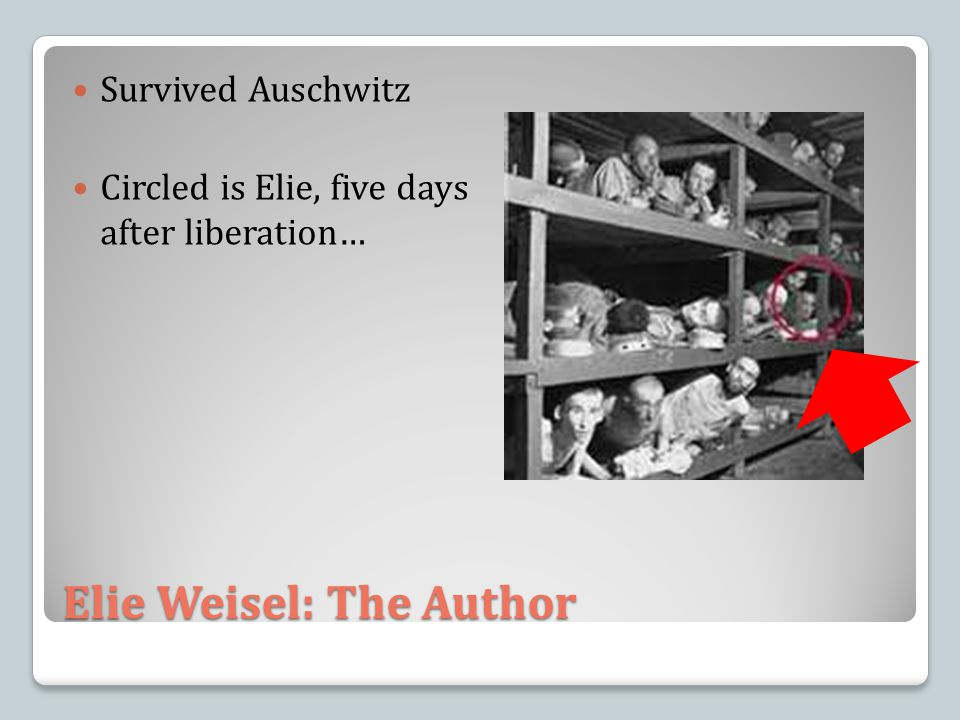 Elie Weisel: The Author