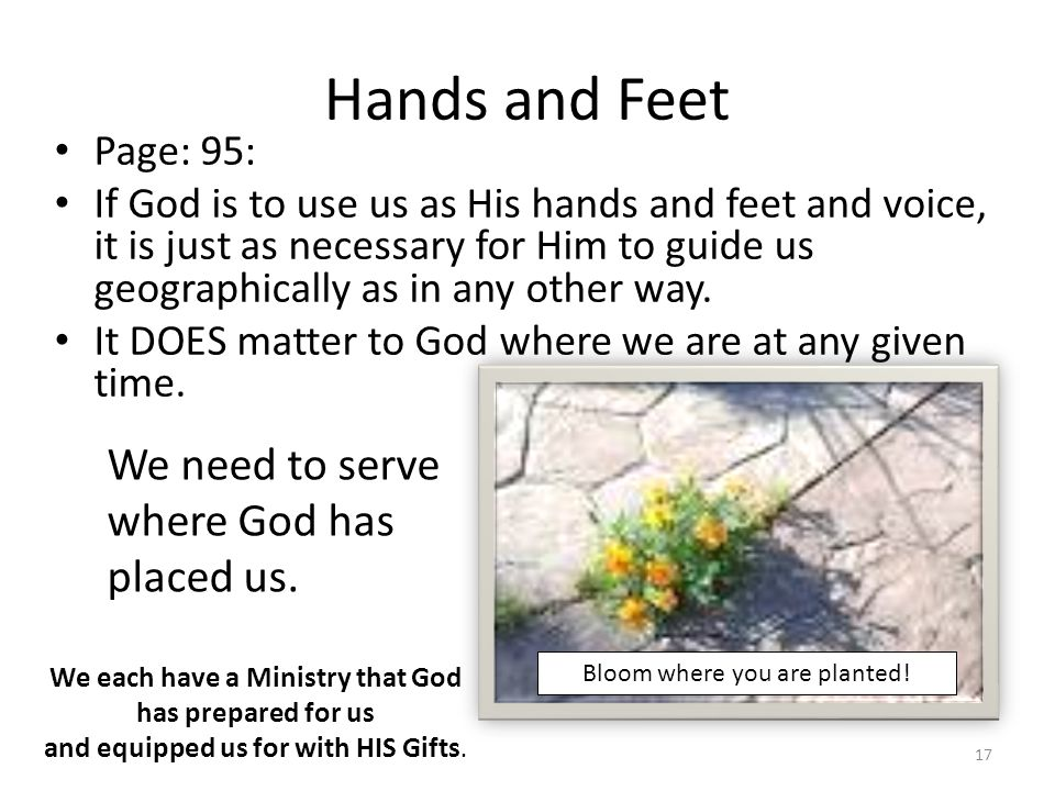 We each have a Ministry that God has prepared for us