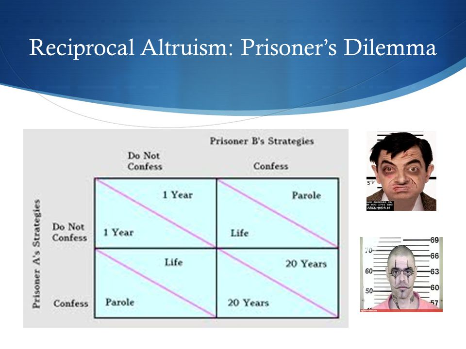Reciprocal Altruism: Prisoner's Dilemma