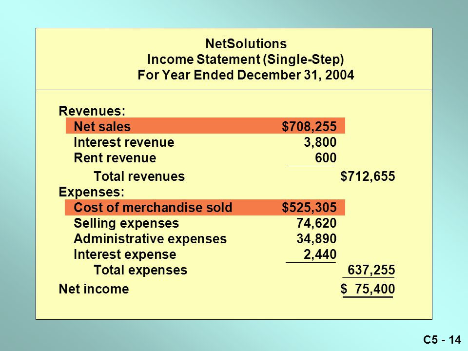 NetSolutions Income Statement (Single-Step) For Year Ended December 31, 2004