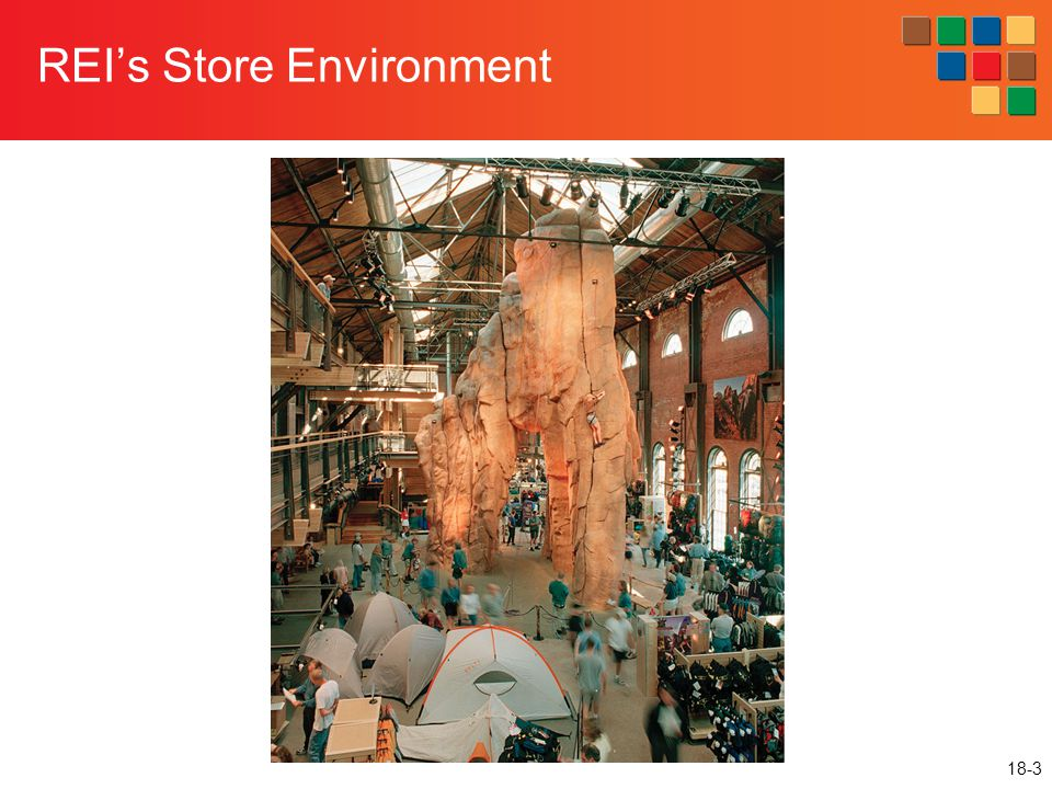 REI's Store Environment