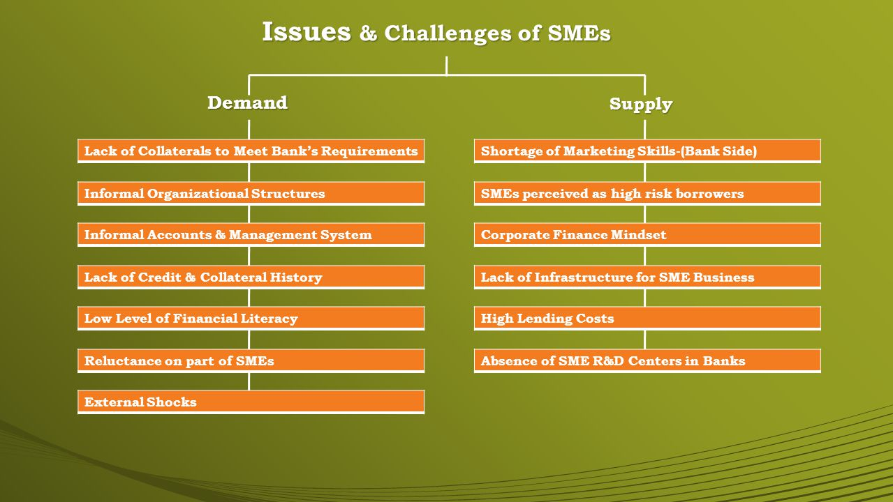 Issues & Challenges of SMEs