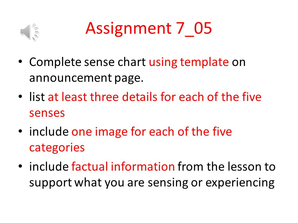 Assignment 7_05 Complete sense chart using template on announcement page. list at least three details for each of the five senses.