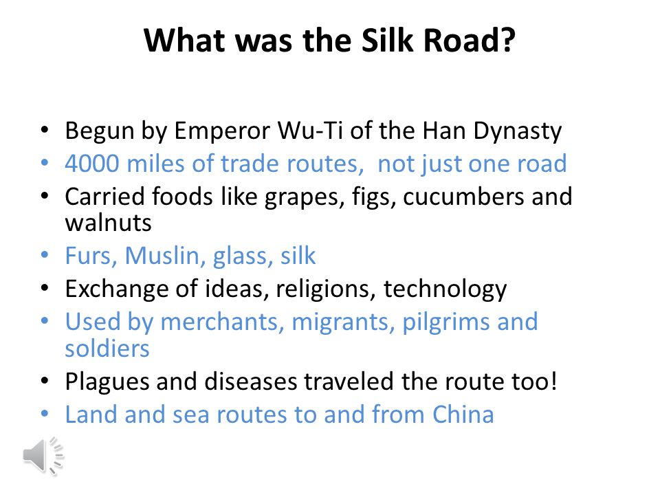 What was the Silk Road Begun by Emperor Wu-Ti of the Han Dynasty