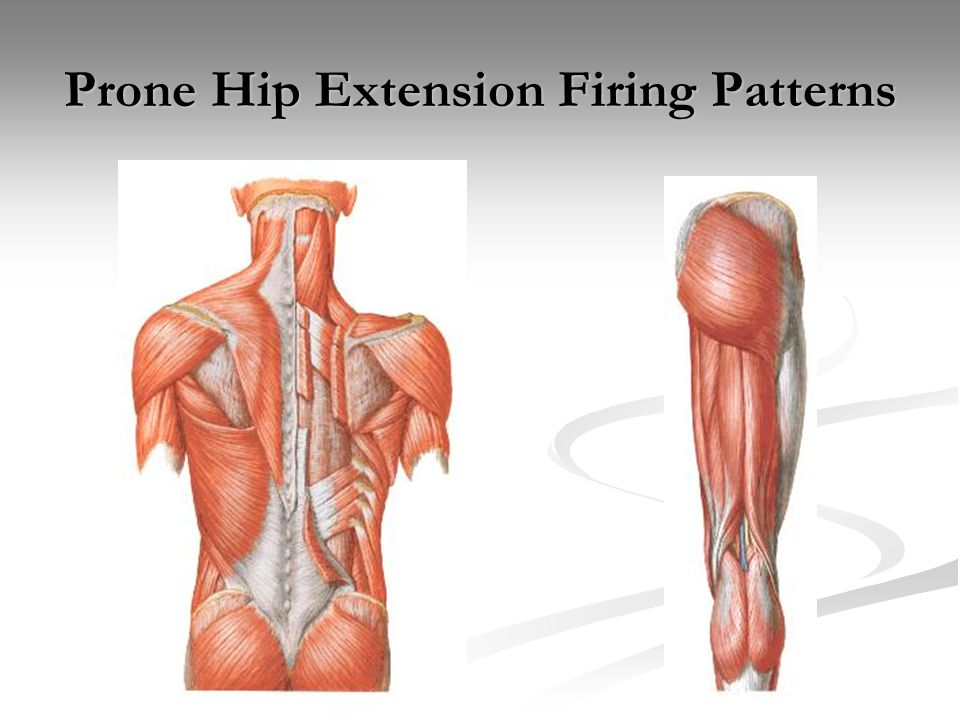 Prone Hip Extension Firing Patterns