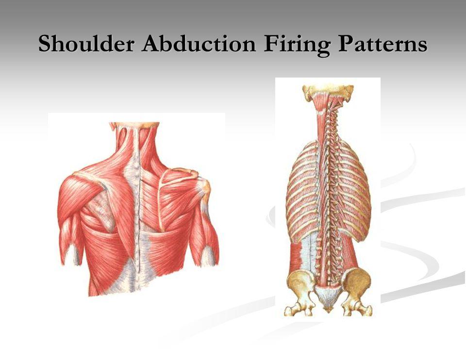 Shoulder Abduction Firing Patterns