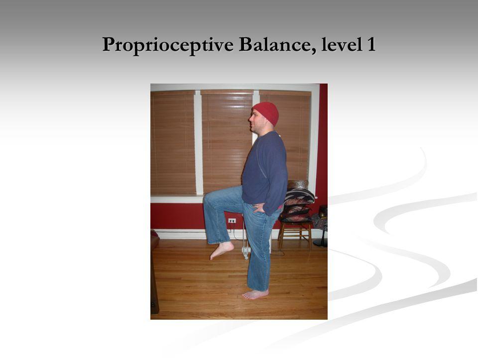 Proprioceptive Balance, level 1