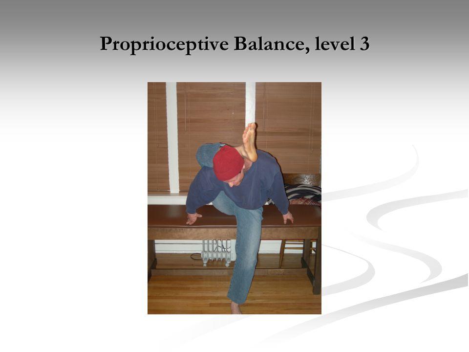 Proprioceptive Balance, level 3