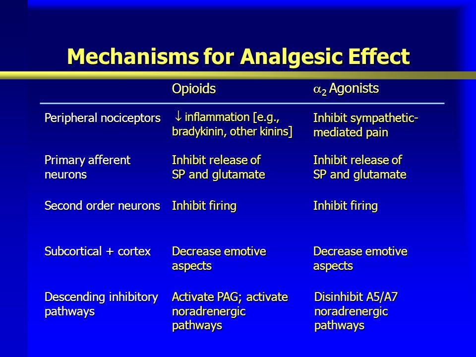 Mechanisms for Analgesic Effect