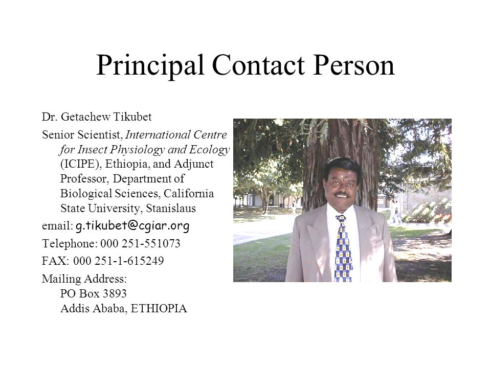 Principal Contact Person