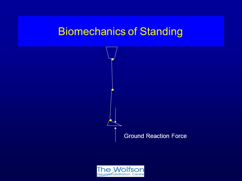 Biomechanics of Standing