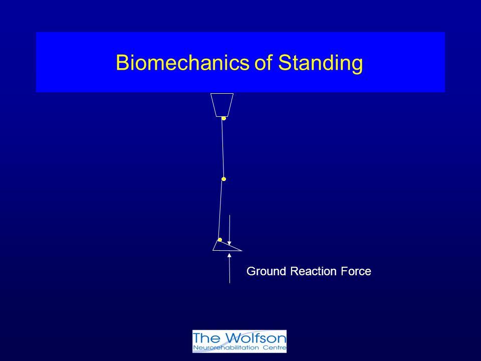 Biomechanics of Standing