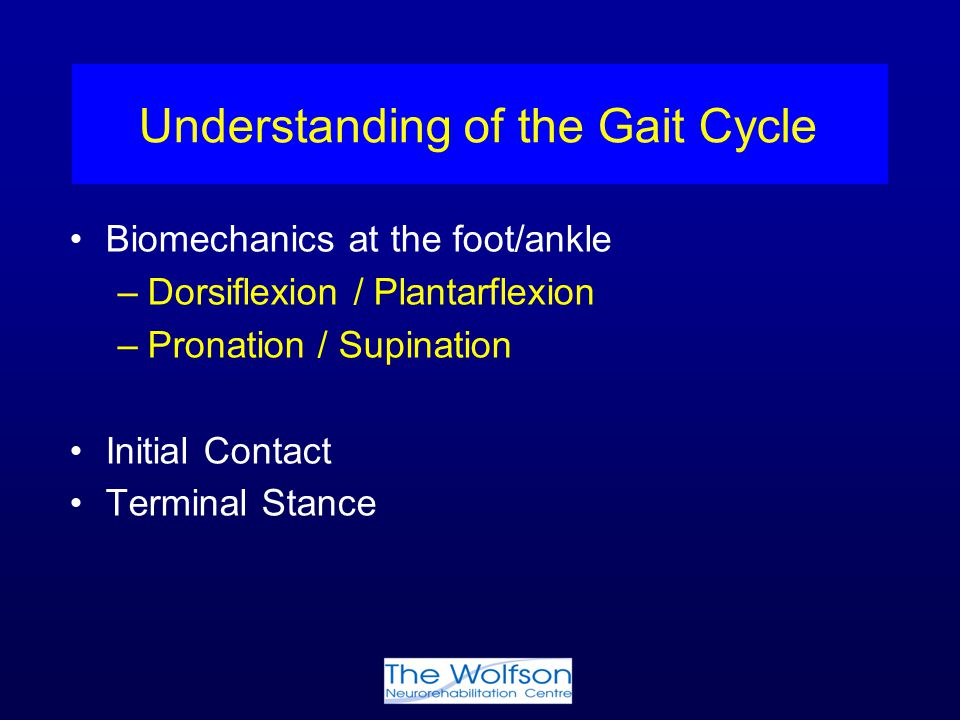 Understanding of the Gait Cycle