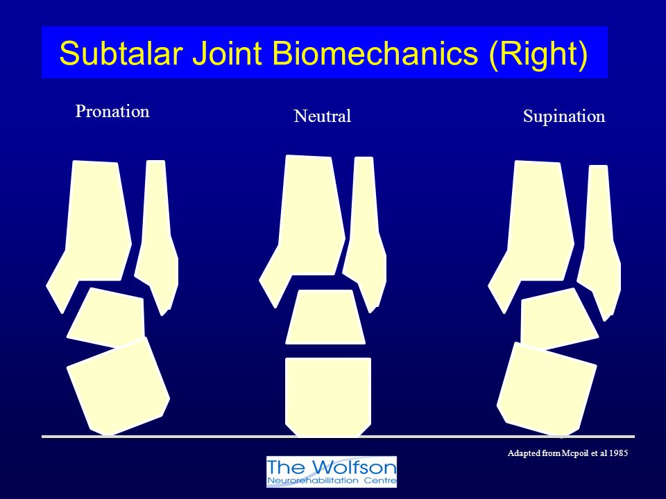 Subtalar Joint Biomechanics (Right)