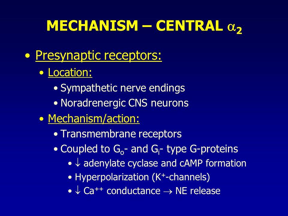 MECHANISM – CENTRAL 2 Presynaptic receptors: Location: