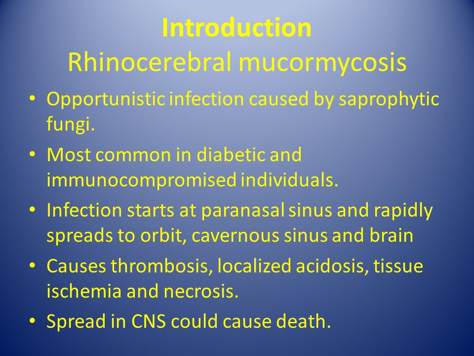 Introduction Rhinocerebral mucormycosis
