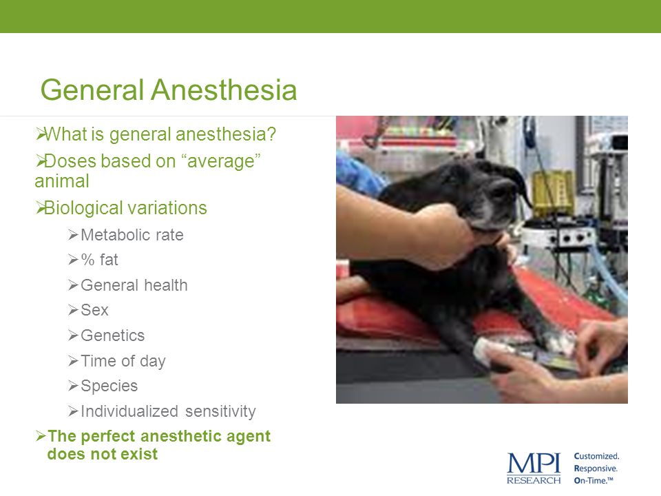 General Anesthesia What is general anesthesia
