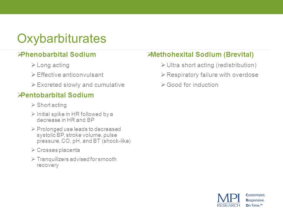 Oxybarbiturates Phenobarbital Sodium Pentobarbital Sodium