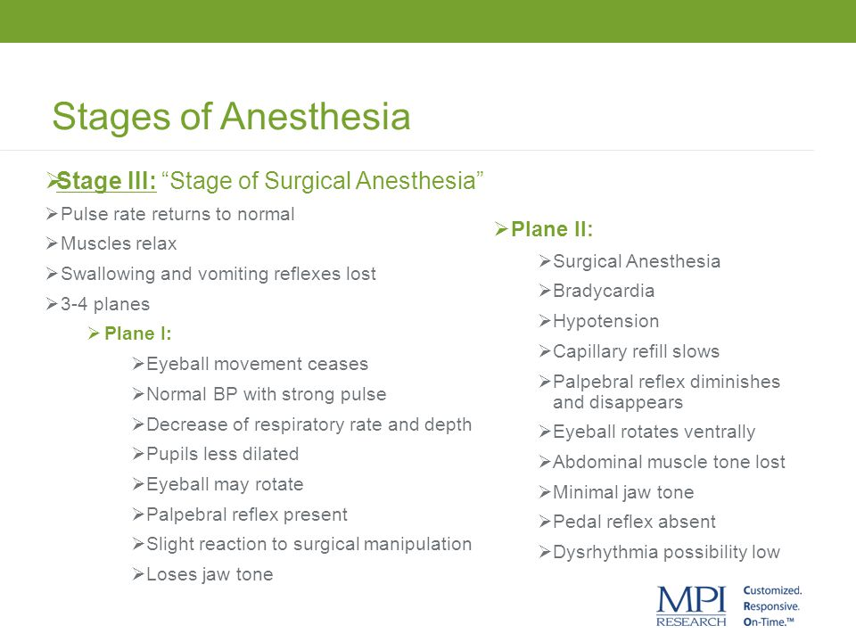 Stages of Anesthesia Stage III: Stage of Surgical Anesthesia