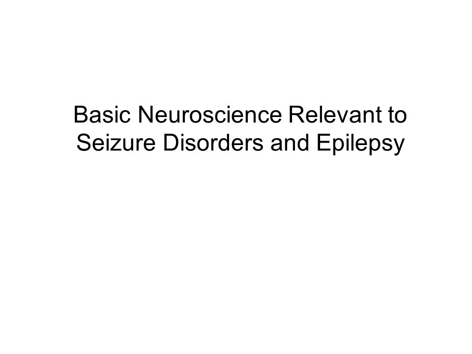 Basic Neuroscience Relevant to Seizure Disorders and Epilepsy