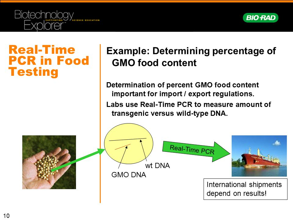Real-Time PCR in Food Testing