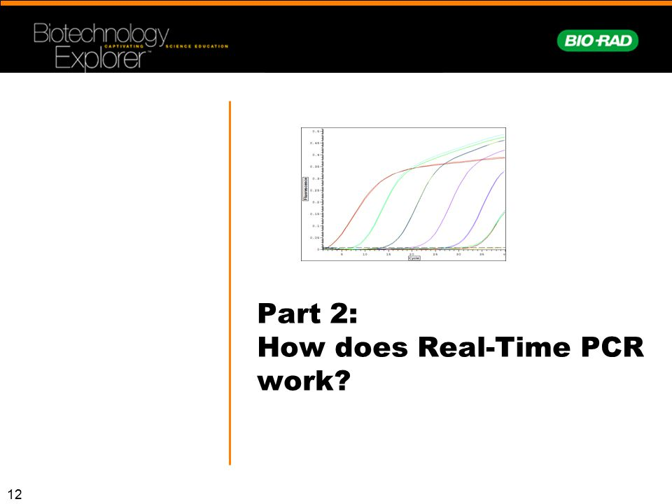Part 2: How does Real-Time PCR work