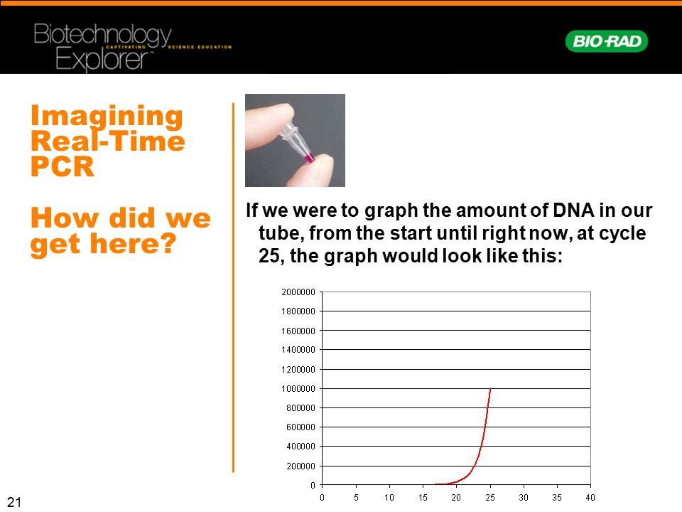 Imagining Real-Time PCR How did we get here
