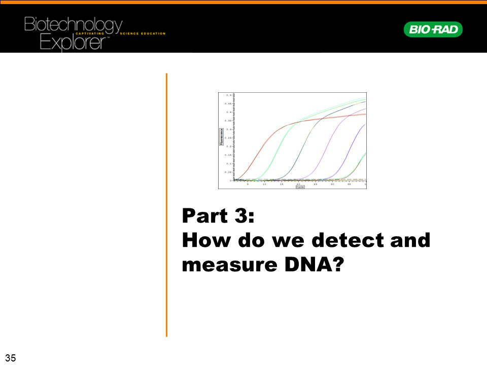 Part 3: How do we detect and measure DNA