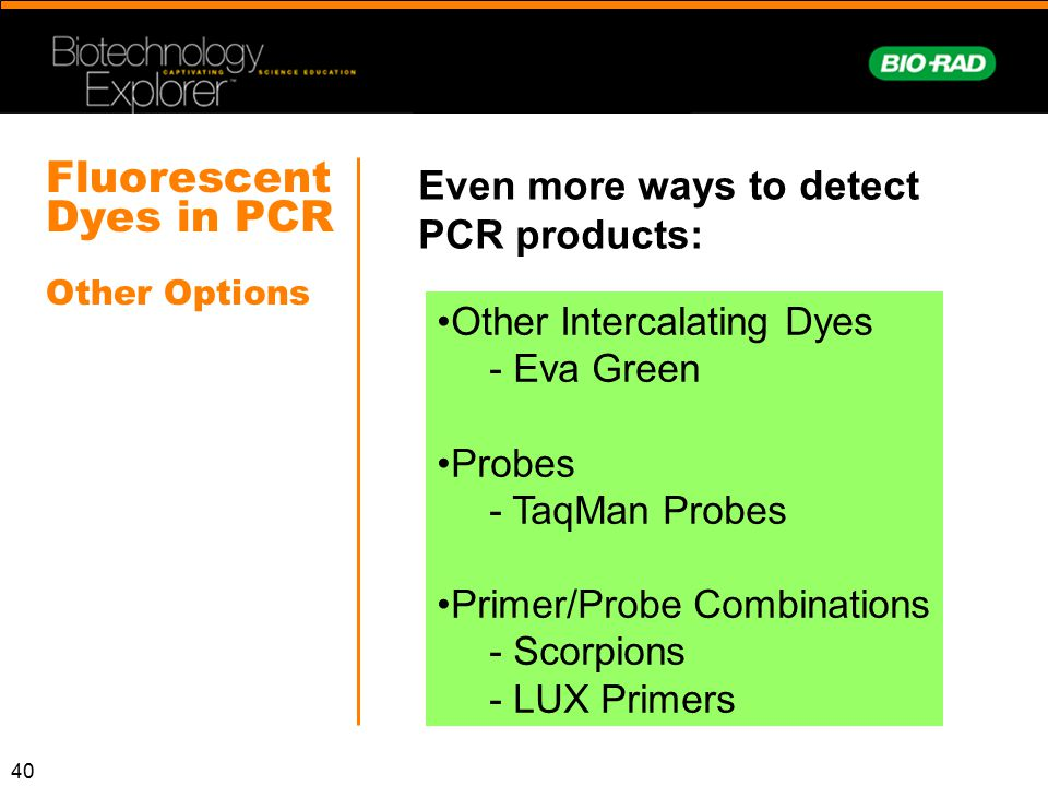 Fluorescent Dyes in PCR Other Options