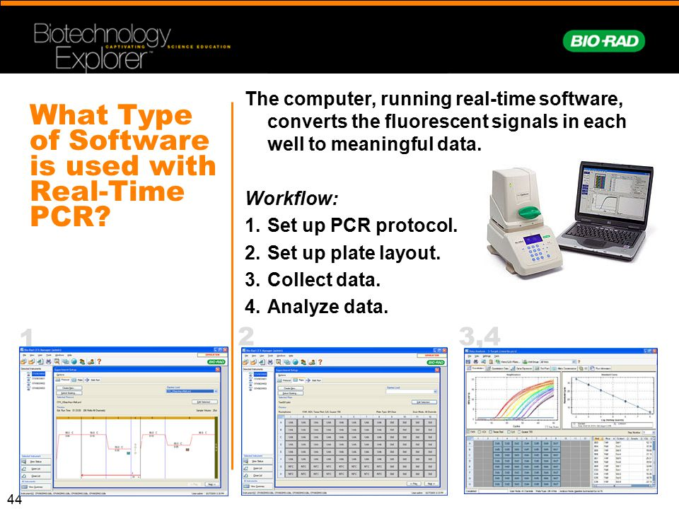 What Type of Software is used with Real-Time PCR