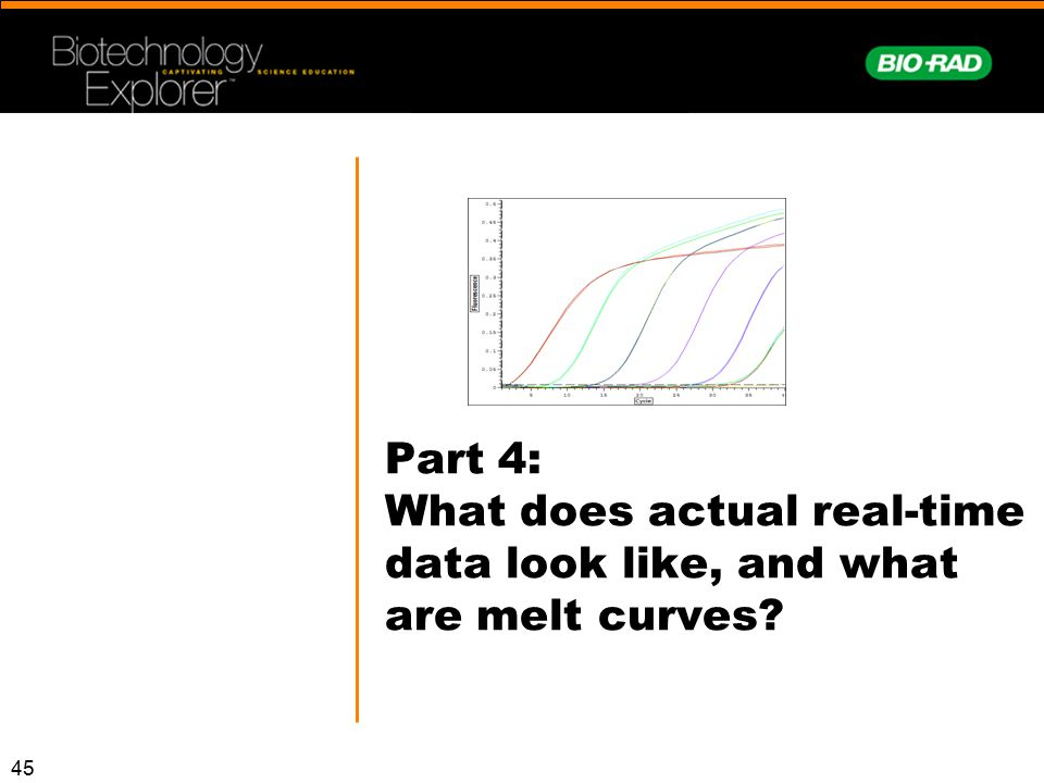 Part 4: What does actual real-time data look like, and what are melt curves