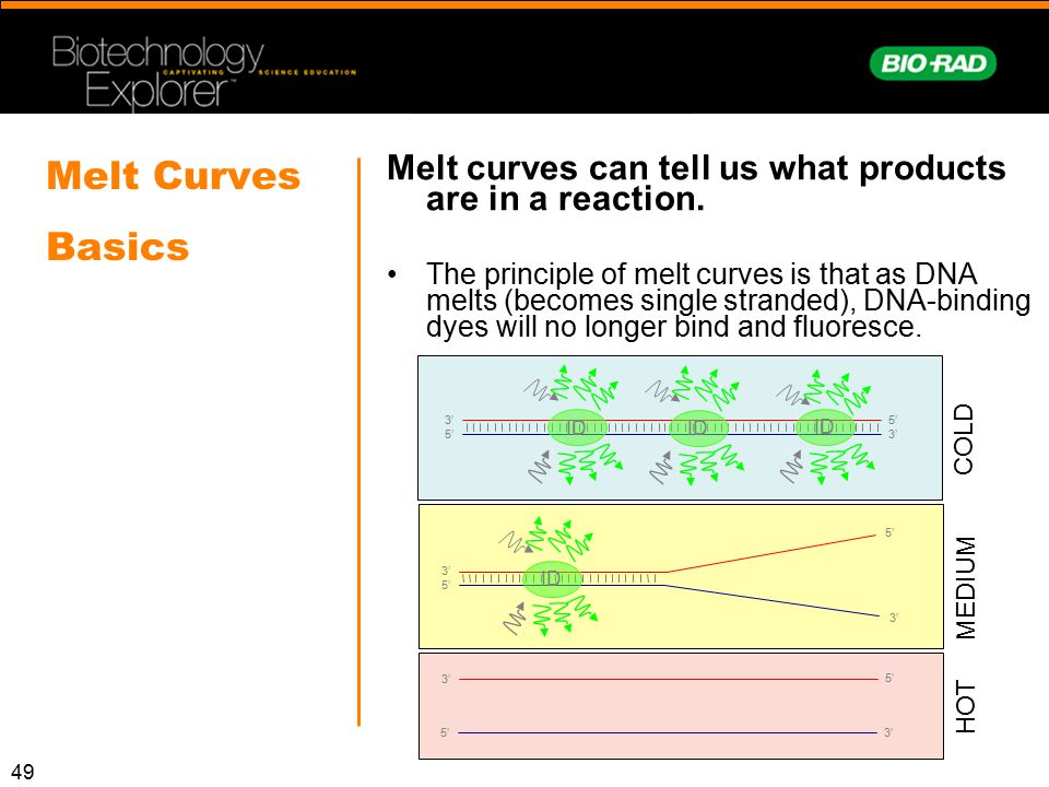 Melt curves can tell us what products are in a reaction.