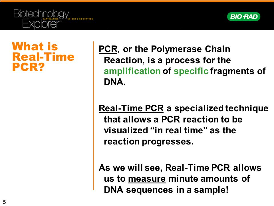 What is Real-Time PCR PCR, or the Polymerase Chain Reaction, is a process for the amplification of specific fragments of DNA.