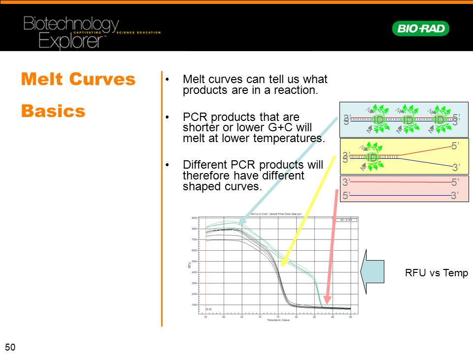Melt Curves Basics Melt curves can tell us what products are in a reaction.