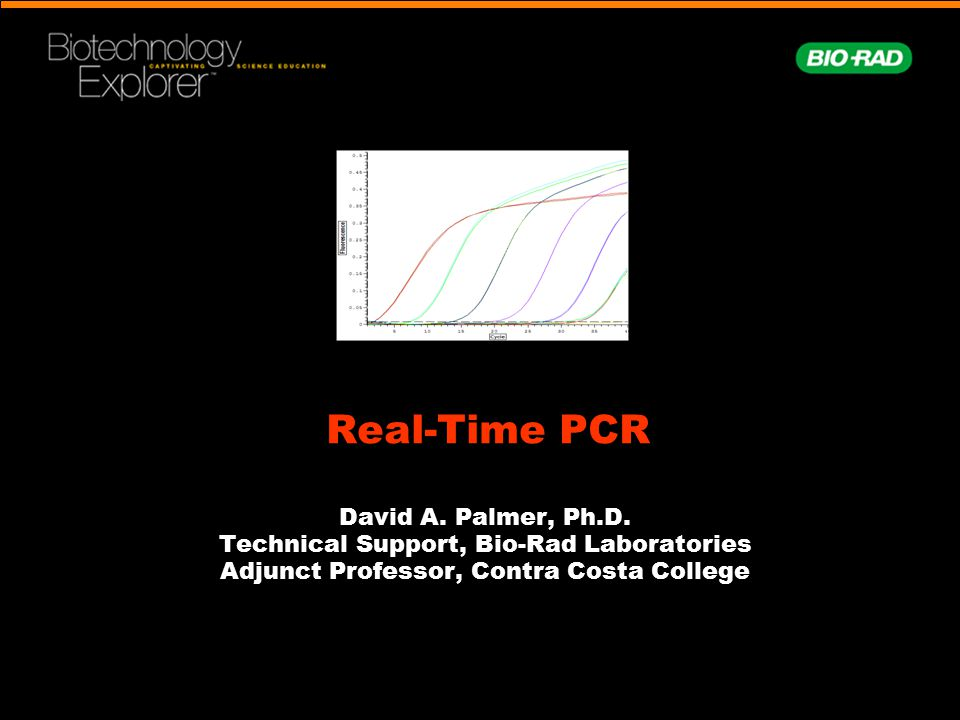 Real-Time PCR David A. Palmer, Ph.D.