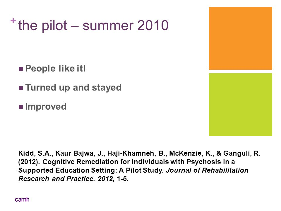 the pilot – summer 2010 People like it! Turned up and stayed Improved