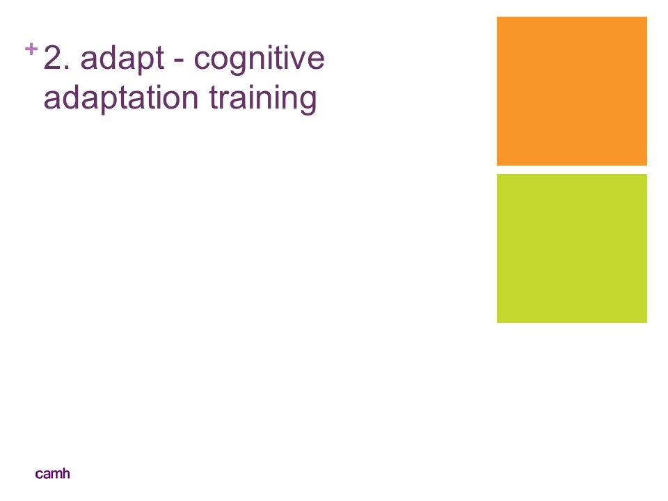 2. adapt - cognitive adaptation training