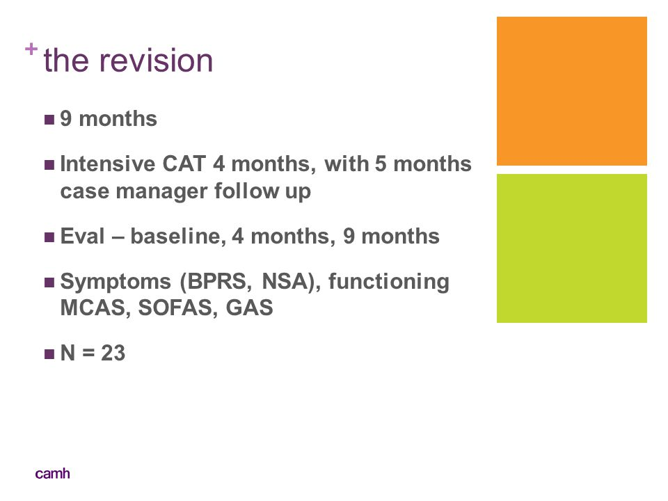 the revision 9 months. Intensive CAT 4 months, with 5 months case manager follow up. Eval – baseline, 4 months, 9 months.