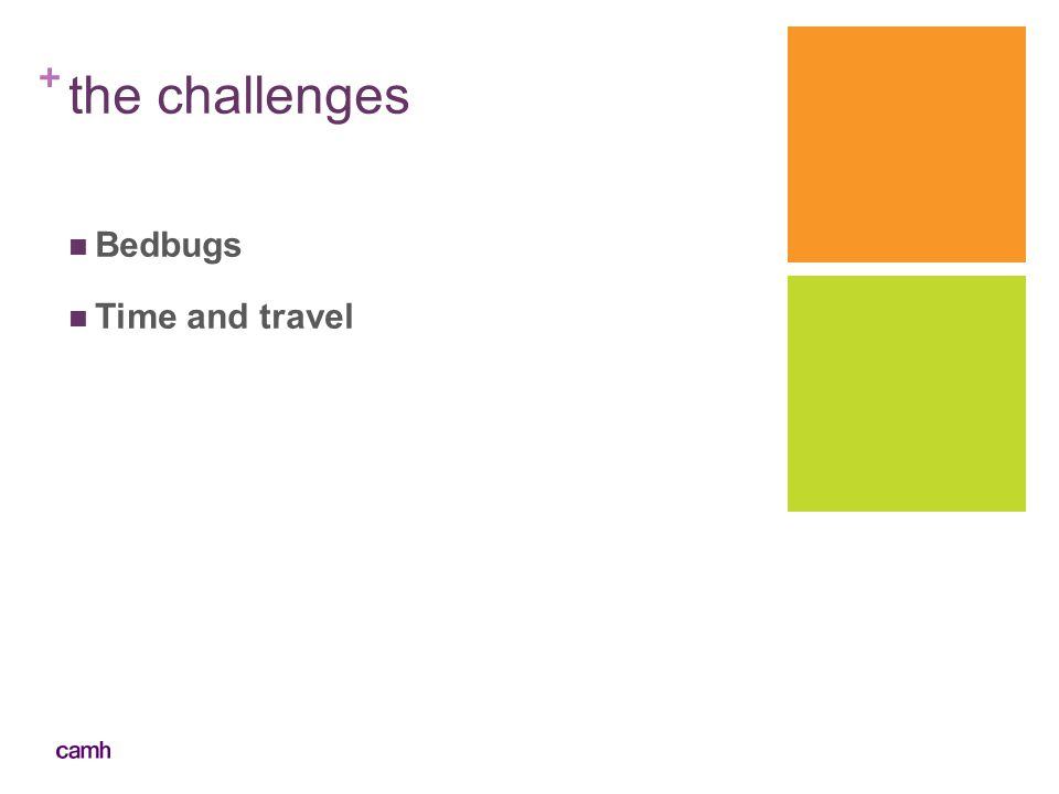 the challenges Bedbugs Time and travel