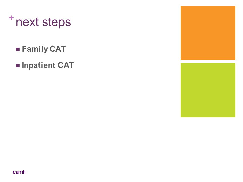 next steps Family CAT Inpatient CAT