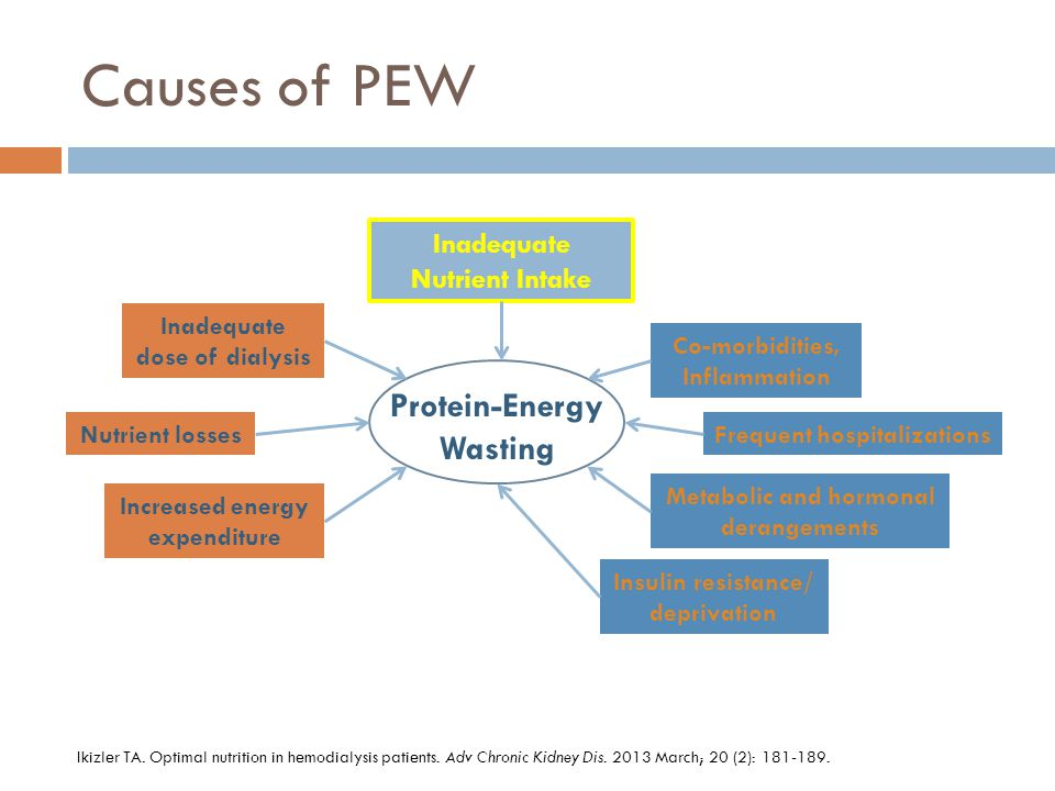 Causes of PEW Protein-Energy Wasting Inadequate Nutrient Intake