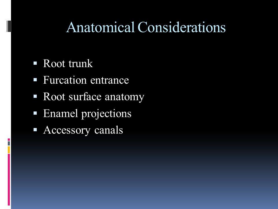 Anatomical Considerations