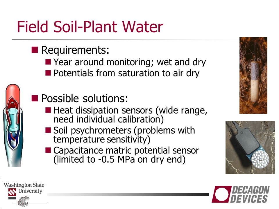 Field Soil-Plant Water