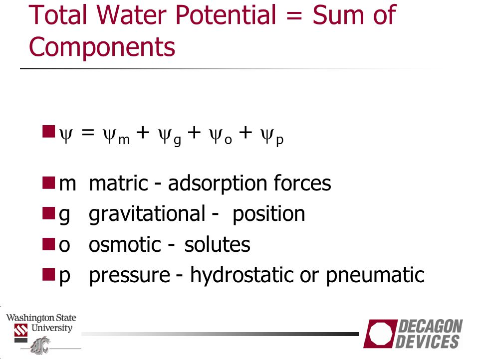 Total Water Potential = Sum of Components
