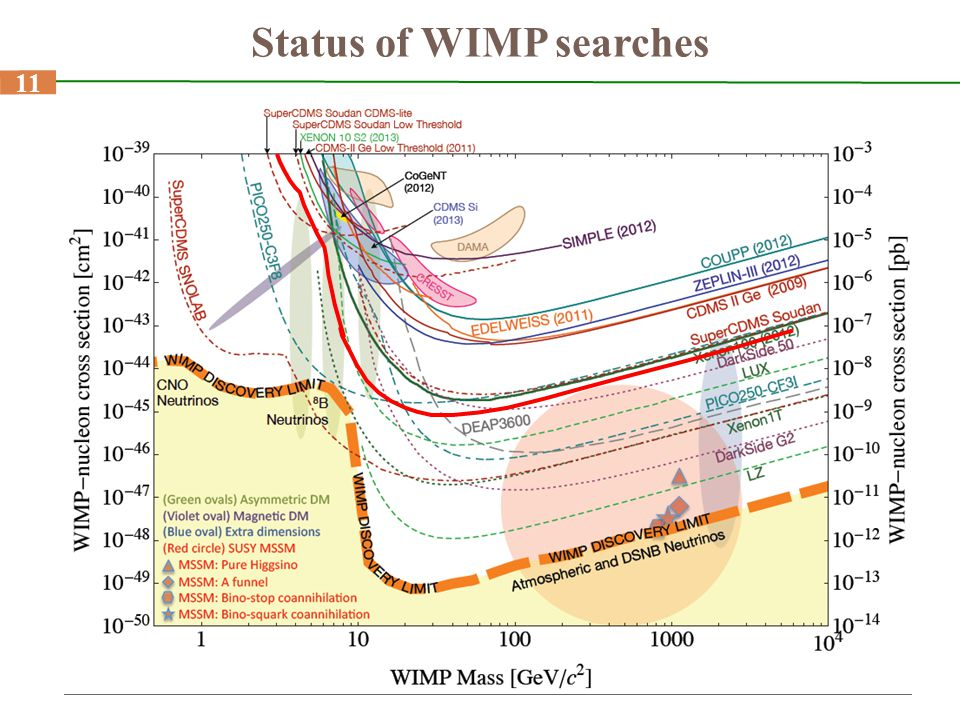 Status of WIMP searches