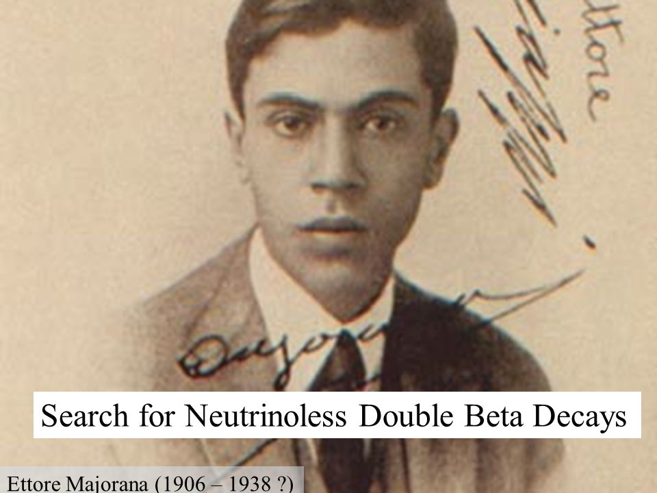 Search for Neutrinoless Double Beta Decays