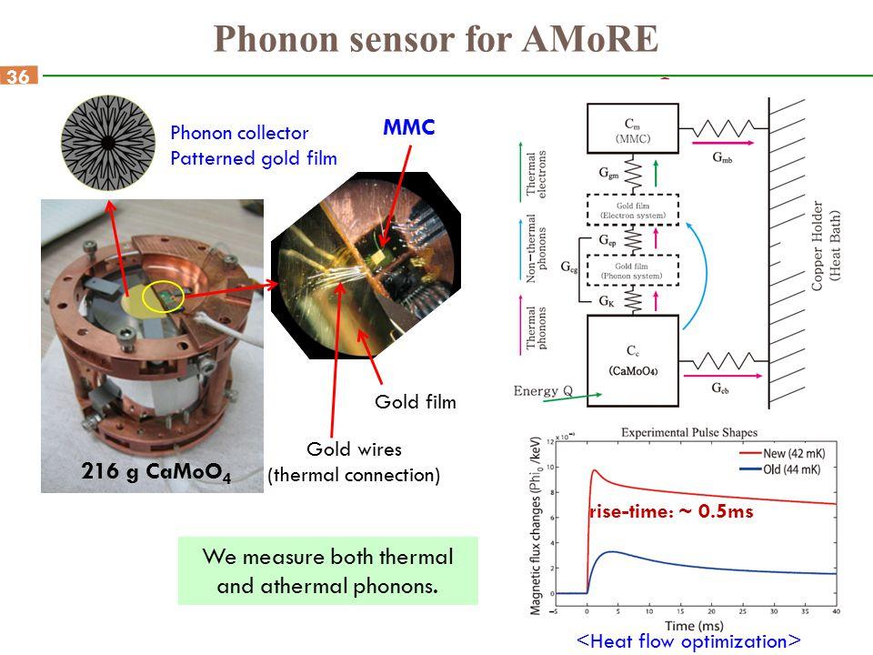 Phonon sensor for AMoRE