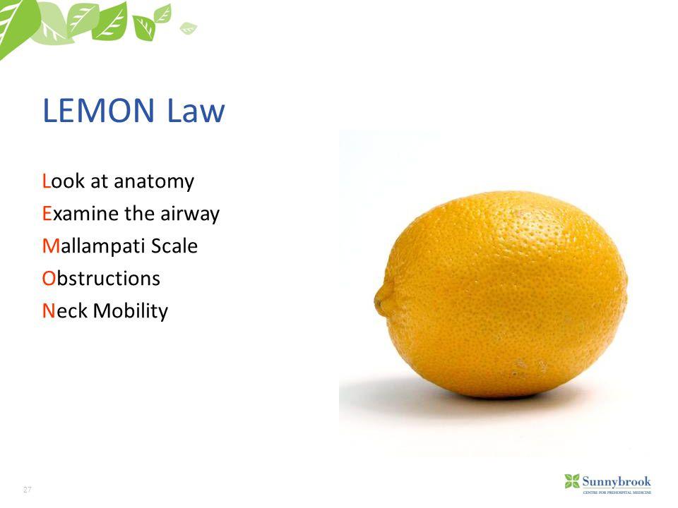 LEMON Law Look at anatomy Examine the airway Mallampati Scale