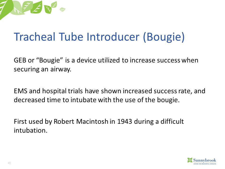 Tracheal Tube Introducer (Bougie)