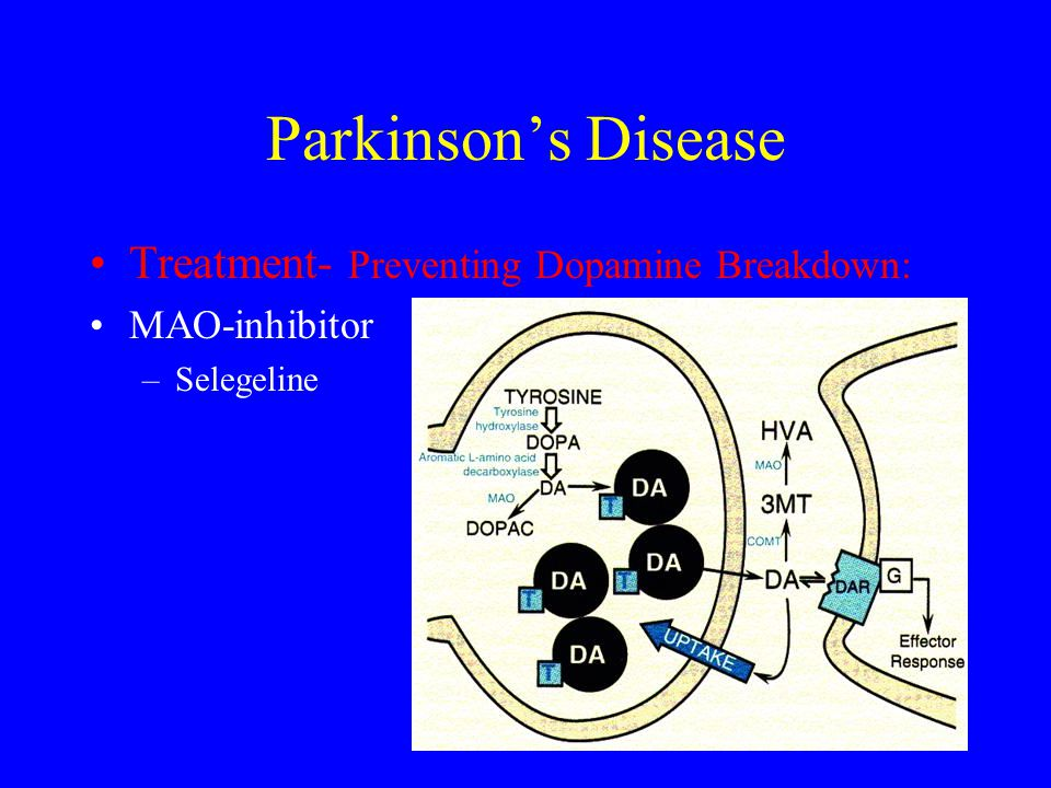 Parkinson's Disease Treatment- Preventing Dopamine Breakdown: